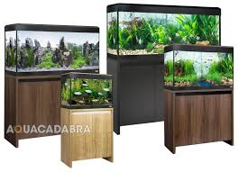 100 large aquarium ornaments uk 13 best aquarium