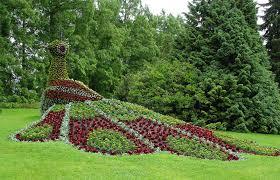 Landscaped Backyard Ideas by Garden Miscellaneous Garden Pinterest Landscaping Design