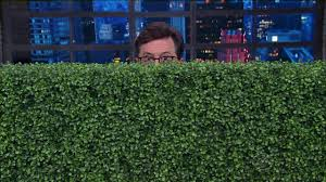 Fake Bushes Late Night Hosts Skewer Sean Spicer For Hiding In Bushes After
