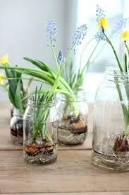 indoor wall garden diy gallery of simple ideas for indoor garden