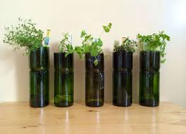 interior garden design ideas mini indoor garden ideas to green your home best home design ideas