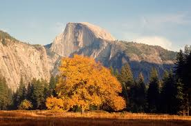 how to the best trip to yosemite in november