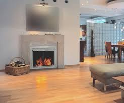 fireplace brushed nickel fireplace doors home design image