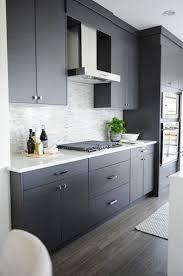 modern kitchen design idea modern kitchen cabinets interior design with wood stainless