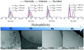 Vitrificateur No Visible Fluorescent Amphiphilic Heterografted Comb Polymers Comprising