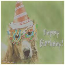 birthday cards awesome send a free birthday card by email send a