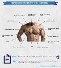 decline bench press muscles best chest exercises to gain chest muscles fitnessandmuscletips