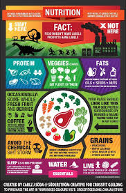 what is all the fuss about paleo paleo chef online diet food