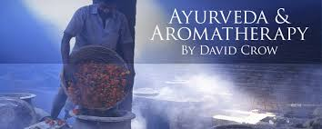 cuisine ayurv ique d inition ayurveda and aromatherapy by david