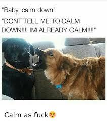 Calm The Fuck Down Meme - baby calm down dont tell me to calm down im already calm calm