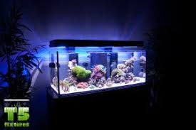 t5 fluorescent light fixtures best aquarium lights t5 fluorescent lights t5 grow light fixtures