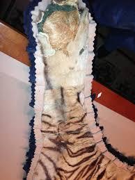 tiger skin rug repair u0026 restoration