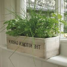 kitchen herb garden kit kenangorgun com