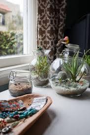 resume modernos terrarios suculentas 125 mejores imágenes de terrarium en pinterest terrarios