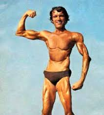 Arnold Schwarzenegger Memes - picture of arnold schwarzenegger