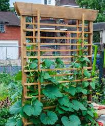 12 best vertical vegetable garden images on pinterest gardening