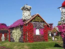 flower house beautiful houses covered with amazing flowers