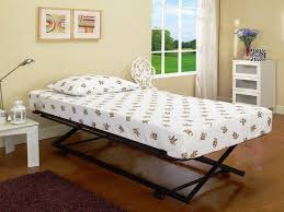 beautiful daybed with trundle bed u2014 thenextgen furnitures daybed