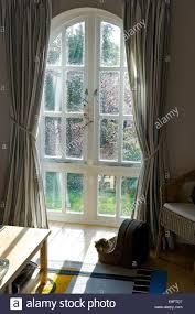 Window Sill Cat Bed Cat Sleeping Window Stock Photos U0026 Cat Sleeping Window Stock