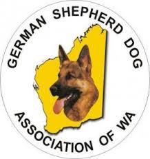 south australian german shepherd breeders gsda of wa german shepherd dog association of western australia