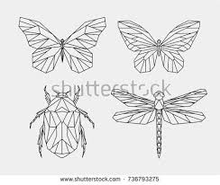 vector abstract polygonal butterfly geometric linear stock vector