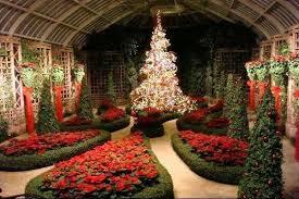 phipps conservatory christmas lights flowerlink with regard to phipps conservatory christmas fishwolfeboro