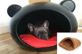 Cats In Dog Beds The Great Dog Beds Guide U0026 Comparison