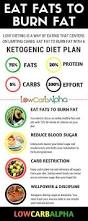 eat fats to burn fat with low carb ketogenic dieting