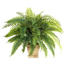 161 best decorate with plants images on artificial