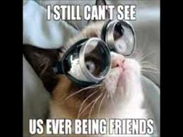 Make Your Own Grumpy Cat Meme - best of the grumpy cat meme clean youtube