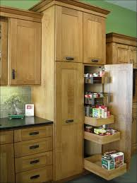 kitchen walk in pantry shelving systems modern walk in pantry