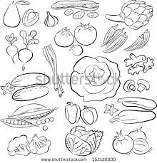 fruit and food vector icon drawings download free vector art