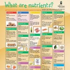 food label worksheet what should i look for on the nutrition