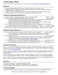 Two Page Resume Example One Page Resume Example One Page Resume Template Free 2 Page