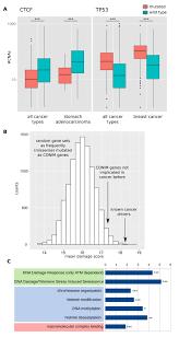 a network of epigenetic modifiers and dna repair genes controls