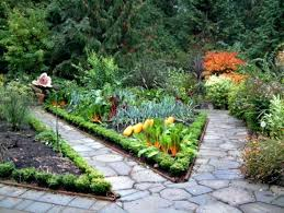 backyard vegetable gardens pictures beautiful vegetable gardens