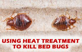 One Bed Bug Heat Treatments Professional Bed Bug Solutions