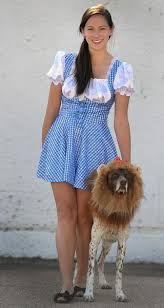 Halloween Costumes Yorkies Consumers Spend 330 Million Halloween Pet Costumes U2013