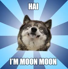 Moon Moon Memes - moon moon meme by nostalgic ellipsism on deviantart