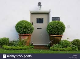 the front door flanked by two ornamental potted trees of bank
