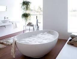 bathtubs cozy egg shaped bathtub design bathroom inspirations