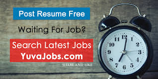 resume sles for engineering students freshers zee yuva latest fresher jobs and government job with placement papers