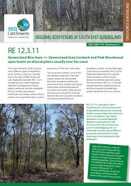 native plants south east queensland regional ecosystem 12 3 11 by healthy land and water issuu