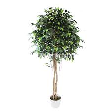 200cm artificial ficus tree plant dongyi