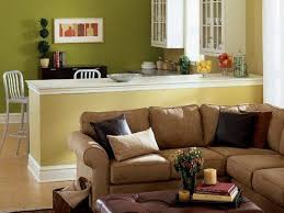 Living Room Furniture Color Ideas Brown Couch Rize Studios On Design - Living room furniture color ideas