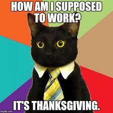 Thanksgiving Cat Meme - business cat memes imgflip
