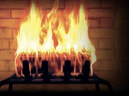 fireplace inserts seattle interior design