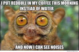 Too Much Coffee Meme - too much coffee by freshdougie75 meme center