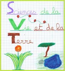 Illustrations du cahier par les 5èmes  Vive les SVT  les sciences