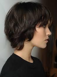 Hochsteckfrisurenen Dickes Haar by 37 Besten Frisuren Bilder Auf Haare Schneiden